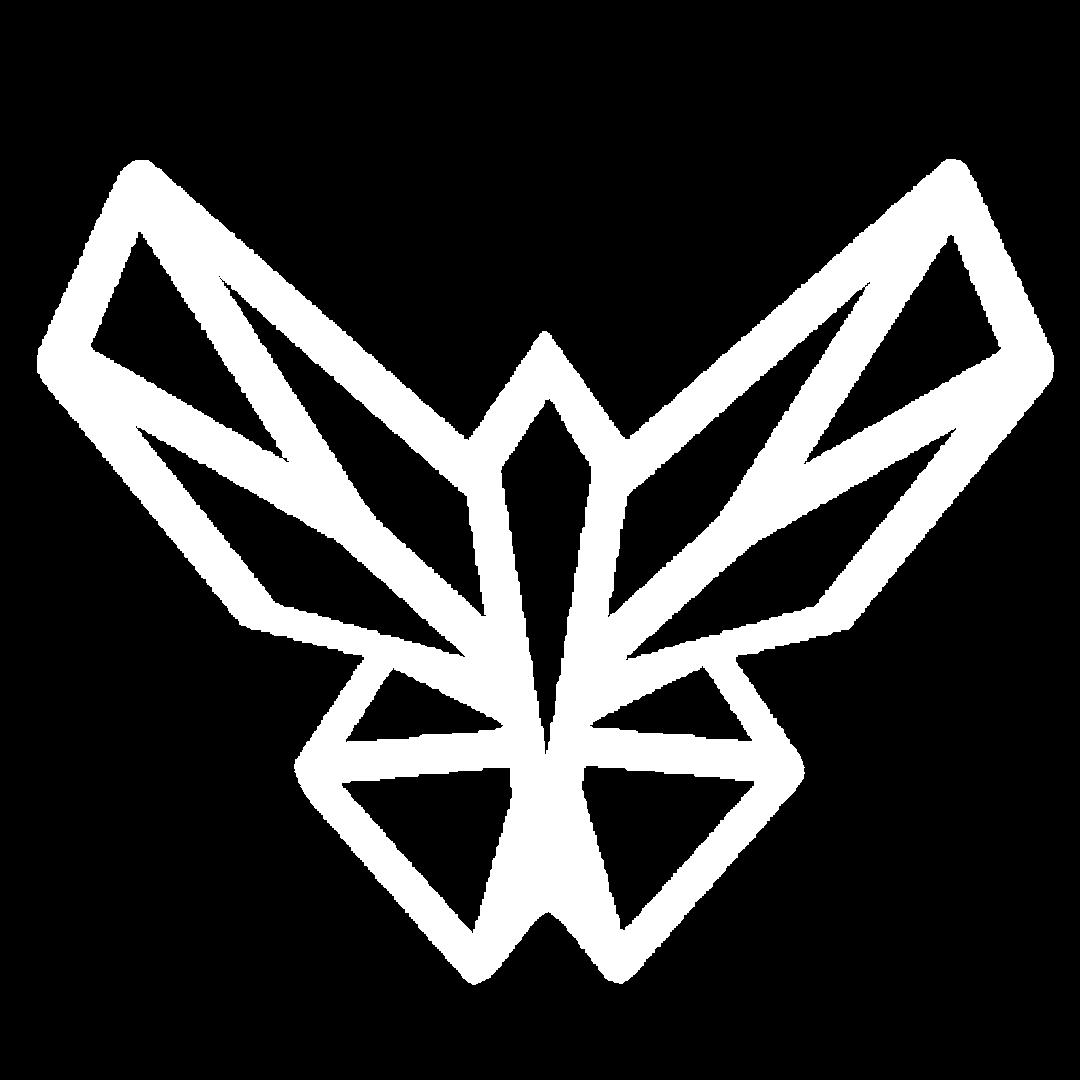 motyliii